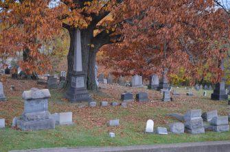 131106 (7) St Clair Cemetery