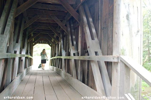 Crossing the Bridge 2017 09 13 (3) msn